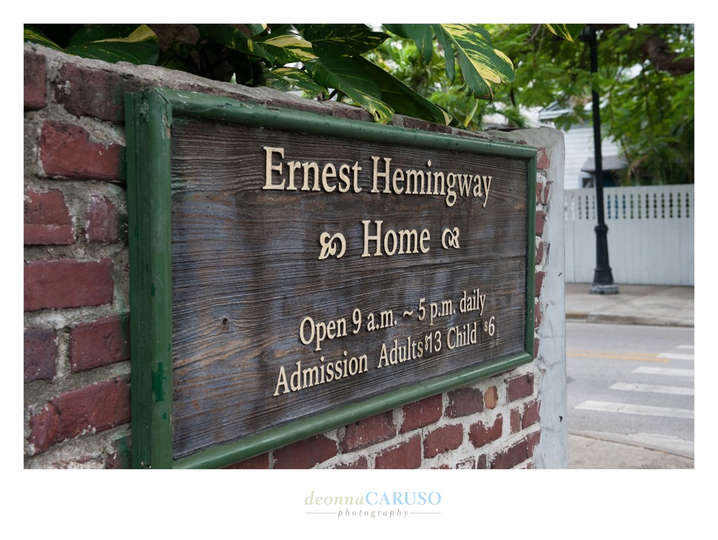 It was fun to visit Ernest Hemingway's home in Key West.  What did I take away from the tour??  Hemingway loved writing, women, booze and CATS!!  There were cats everywhere on this property!